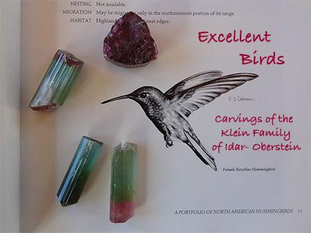 Excellent Birds title image