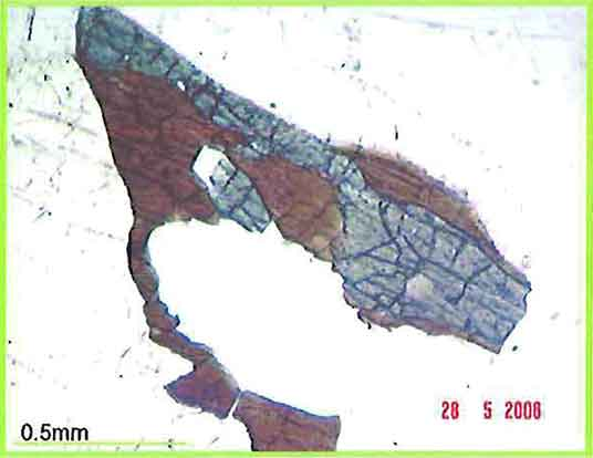 Pyroxene Partly Altered To Hornblende photomicrograph image