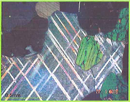 Calcite Showing Twinning And Amphibole photomicrogaph image