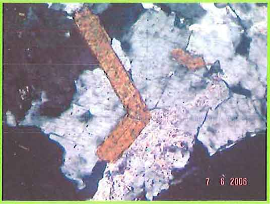 Elongated Biotite Crystal photomicrogaph image
