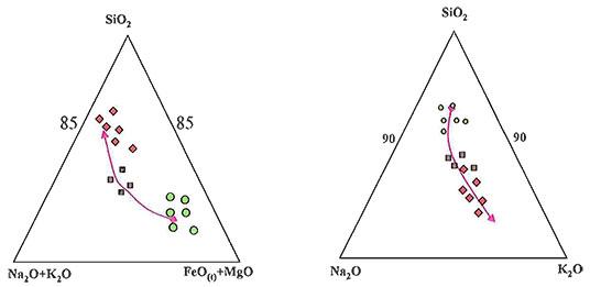 Rectangular Shaped Nepheline, Hornblende And Calcite photomicrogaph image