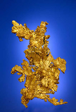 Gold Specimen photo image
