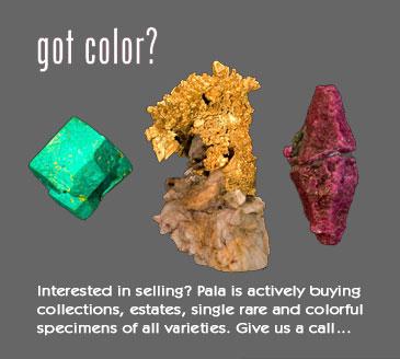 Got Color? image