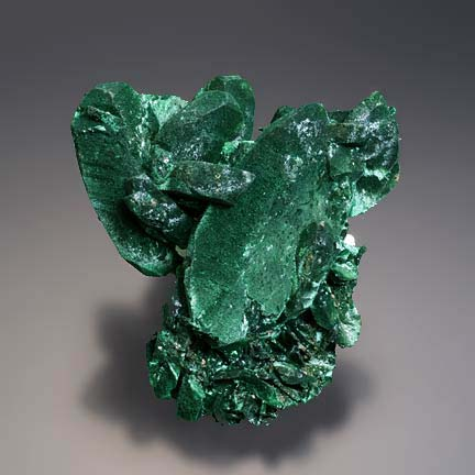 Malachite Pseudomorphite After Azurite photo image
