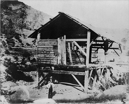 Sawmill photo image