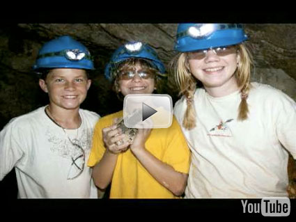Young Mineral Collectors image
