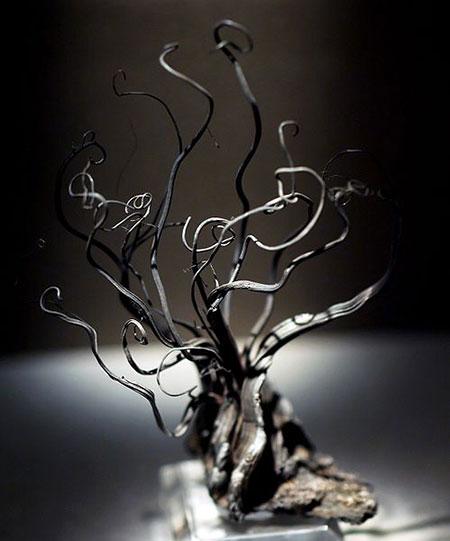 Silver Specimen photo image