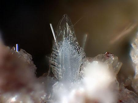 Tridymite Aggregate photo image